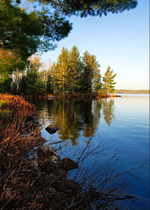 Chad Lake Greeting Card featuring the photograph Morning On Chad Lake 4 by Larry Ricker