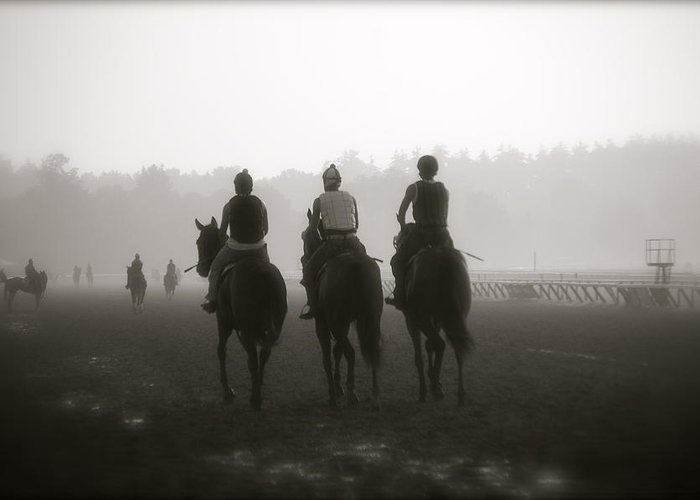 Horses Greeting Card featuring the photograph Morning Workout Saratoga Ny by Amanda Lonergan