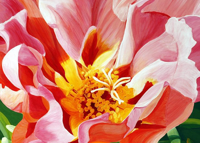 Macro Flower Greeting Card featuring the painting Moss Rose by Julie Pflanzer