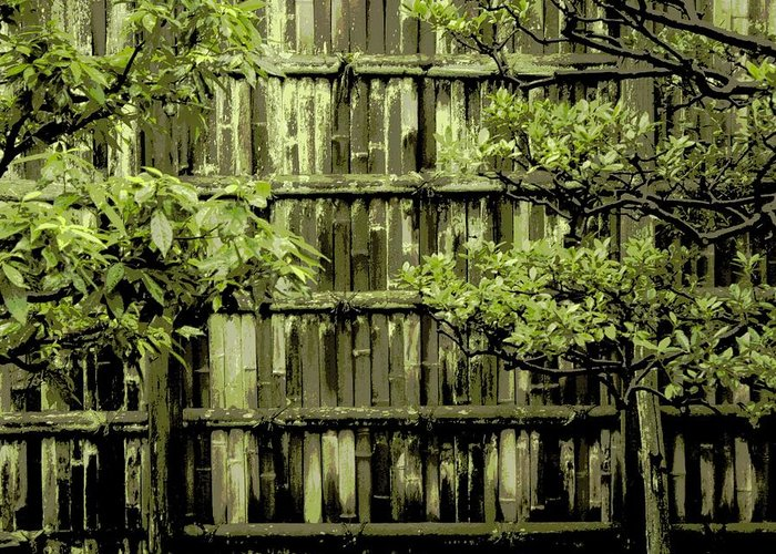 Moss Greeting Card featuring the photograph Mossy Bamboo Fence - Digital Art by Carol Groenen