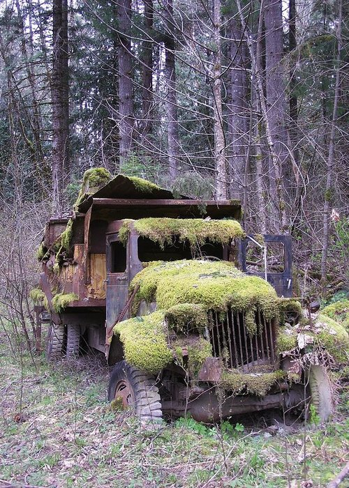Truck Greeting Card featuring the photograph Mossy Truck by Gene Ritchhart