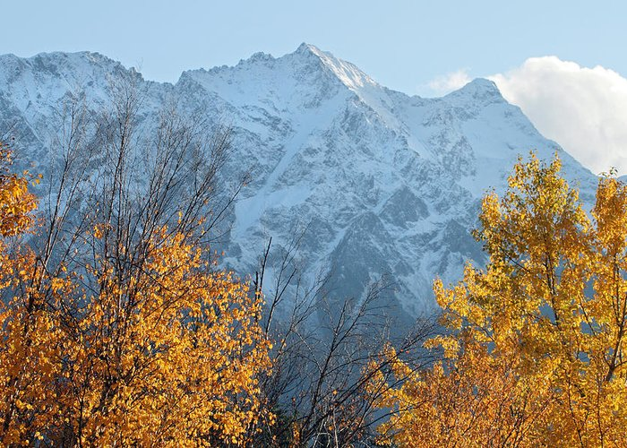 Mount Currie Greeting Card featuring the photograph Mount Currie Autumn by Pierre Leclerc Photography