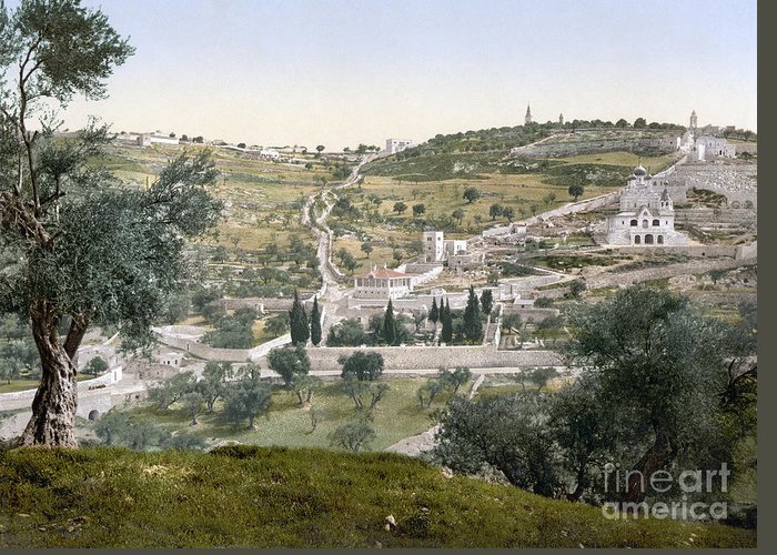1900 Greeting Card featuring the photograph Mount Of Olives, C1900 by Granger