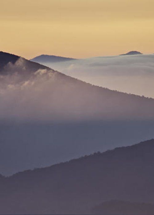 Parkway Greeting Card featuring the photograph Mount Pisgah In Morning Light - Blue Ridge Mountains by Rob Travis
