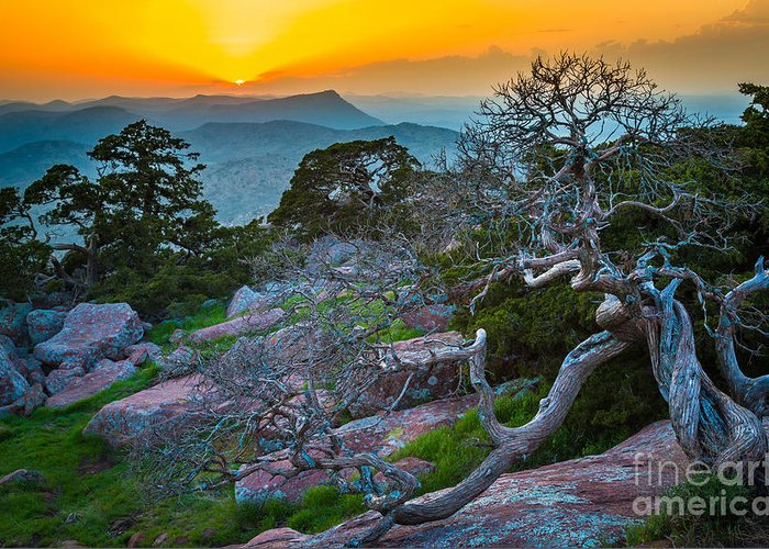 America Greeting Card featuring the photograph Mount Scott Sunset by Inge Johnsson