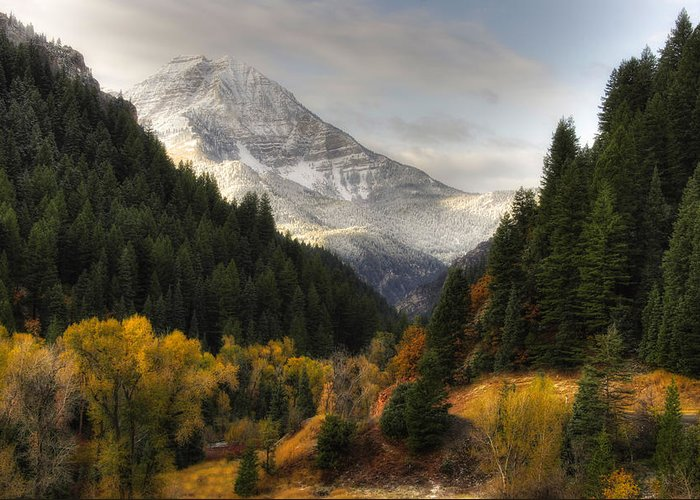 Mountain; Peak; Peaks; Mount Timpanogos Wilderness; Wasatch Mountains; Mt; Mts; Autumn; Fall; Winter Greeting Card featuring the photograph Mount Timpanogos 2 by Douglas Pulsipher