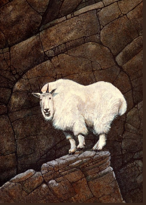 Wildlife Greeting Card featuring the painting Mountain Goat by Frank Wilson