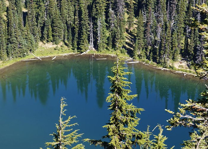 Mountain Greeting Card featuring the photograph Mountain Lake by Sonja Anderson