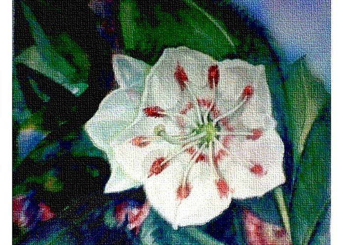 Art Greeting Card featuring the painting Mountain Laurel Blossom Closeup by Elle Smith Fagan