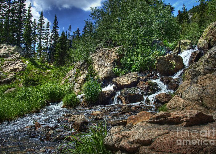 Landscape Greeting Card featuring the photograph Mountain Stream 3 by Pete Hellmann