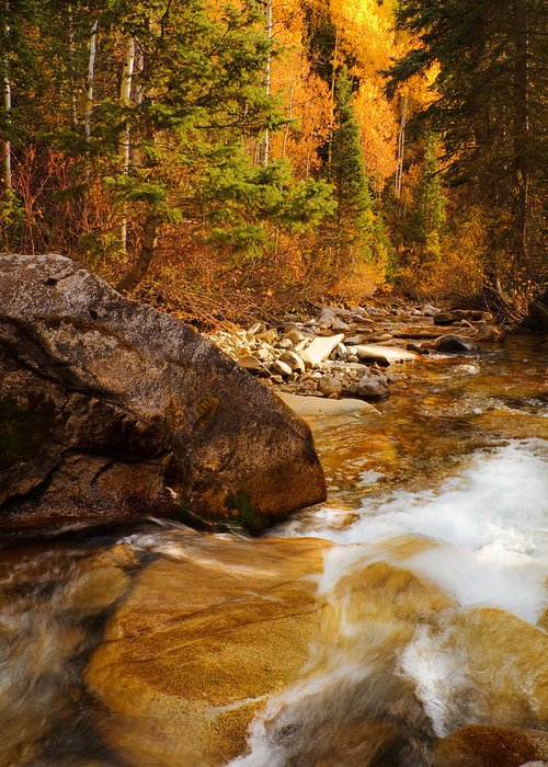 Autumn Greeting Card featuring the photograph Mountain Stream In Autumn by Utah Images