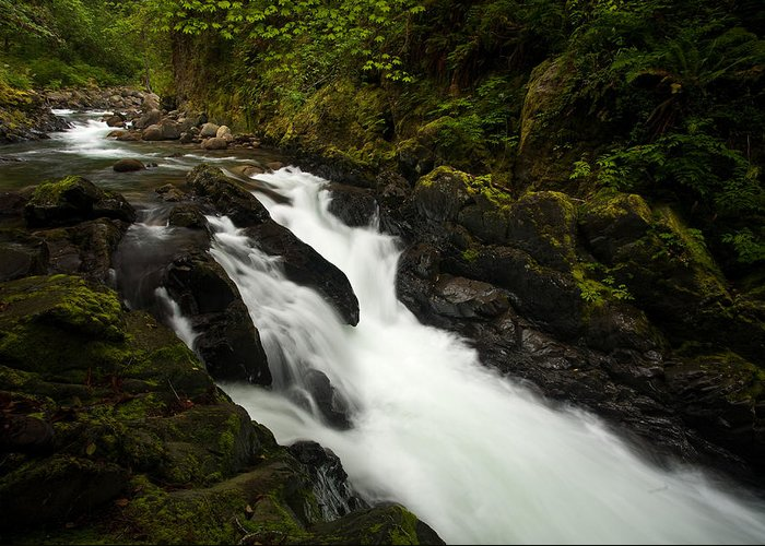 Stream Greeting Card featuring the photograph Mountain Stream by Mike Reid