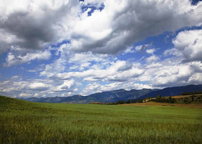 Blue Clean Clear Clouds Color Colorful Country Field Flora Freed Greeting Card featuring the photograph Mountainfarm by Mark Smith