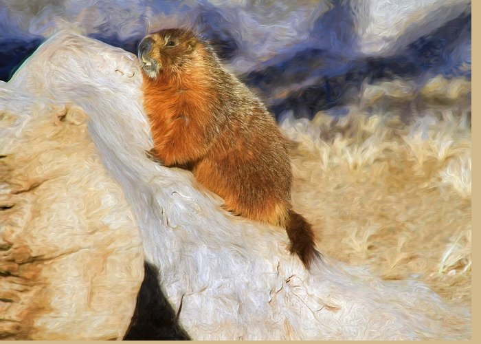 Groundhog Greeting Card featuring the photograph Mountains To Climb by Donna Kennedy