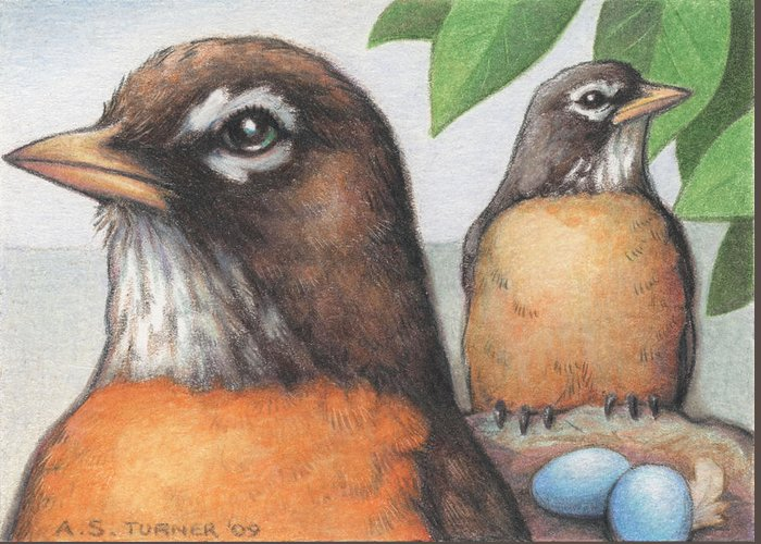 Birds Greeting Card featuring the drawing Mr And Mrs Robin Are Expecting by Amy S Turner