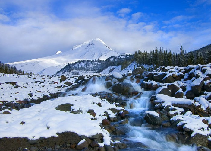 Mt. Hood Greeting Card featuring the photograph Mt. Hood Morning by Mike Dawson