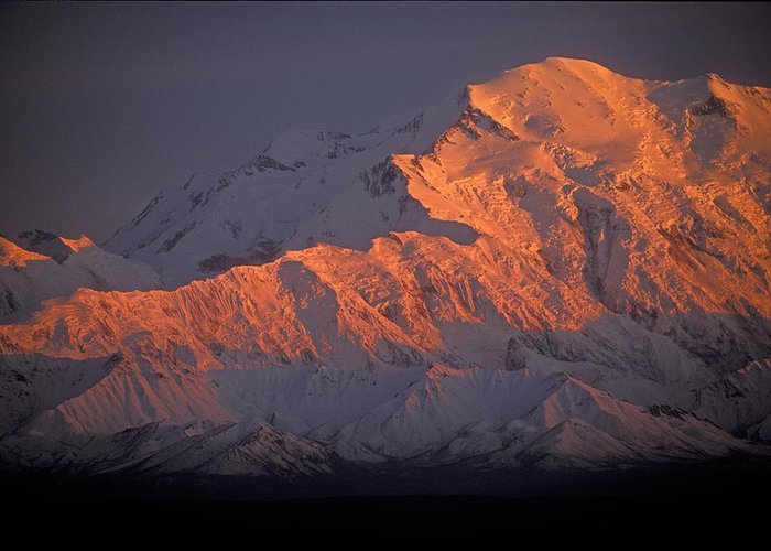 Denali National Park Greeting Card featuring the photograph Mt. Mckinley Sunset by Sandra Bronstein