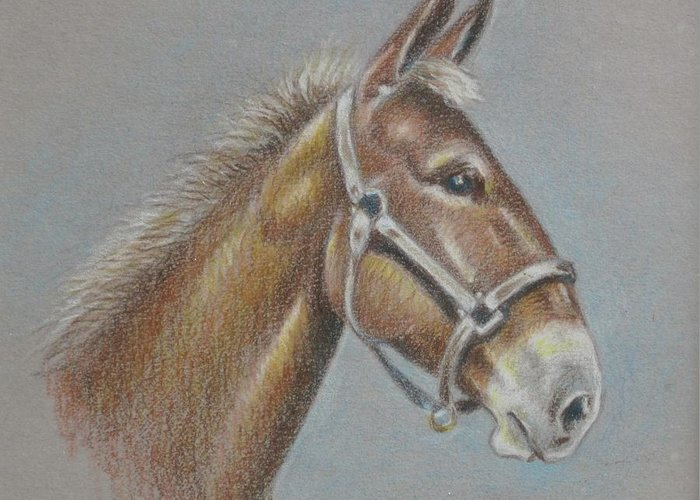 Greeting Card featuring the painting Mule Head by Dorothy Coatsworth