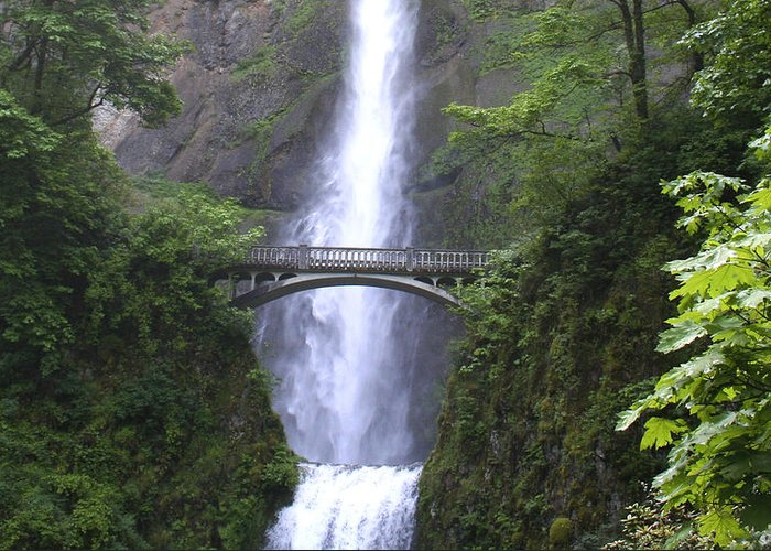 Waterfall Greeting Card featuring the photograph Multnomah Falls Wf1051a by Mary Gaines