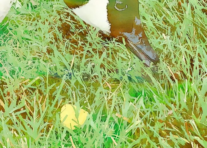 Waterfowl Greeting Card featuring the digital art Munching On Green Grass by Karen Matthews