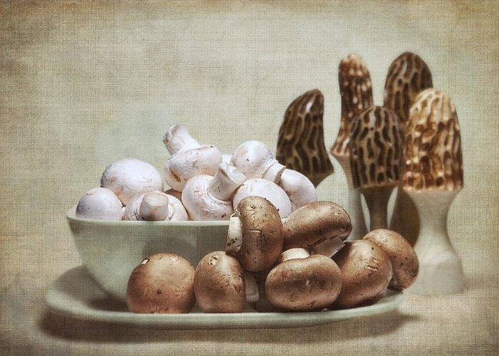 Fungus Greeting Cards