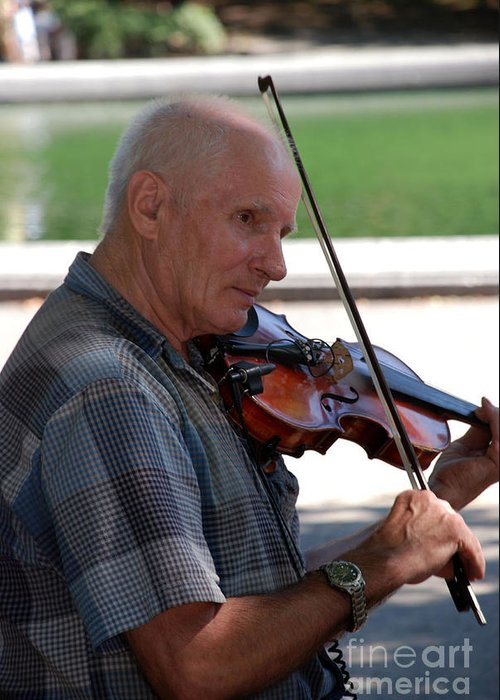 Violin Greeting Card featuring the photograph Musician In Central Park by Terri Creasy