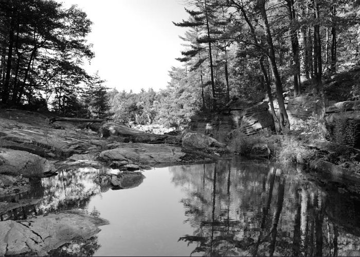 Lake Rocks Landscape Pine Canada Greeting Card featuring the photograph Muskoka Country II by Andriy Zolotoiy