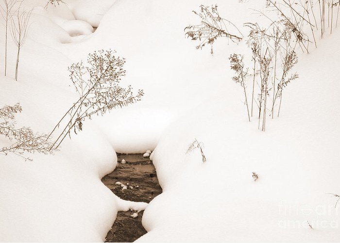 Landscape Greeting Card featuring the photograph Muskoka Winter 2 by Kathi Shotwell