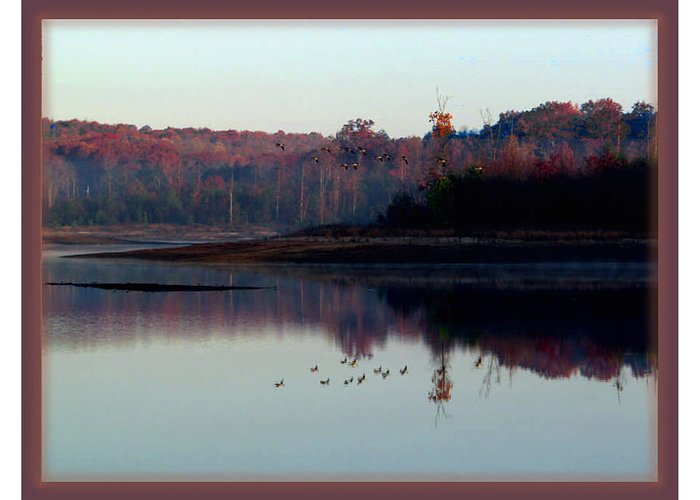 Greeting Card featuring the photograph My Back Yard by Betty Roberts