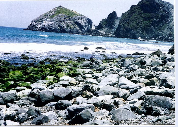 Seascape Greeting Card featuring the photograph My Rock Garden by Maggie Cruser