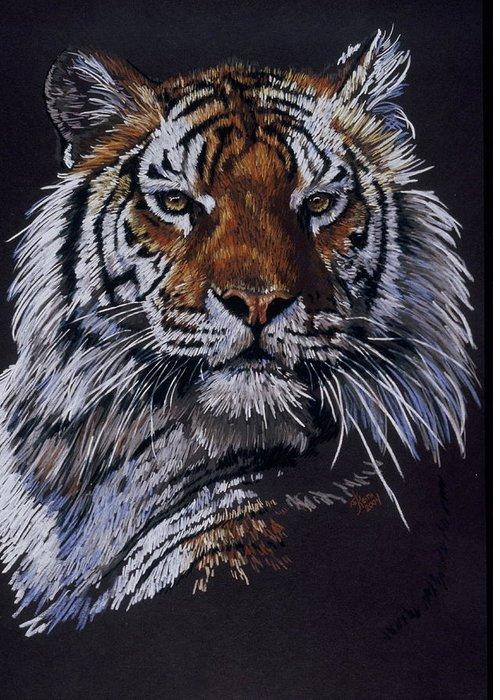 Tiger Greeting Card featuring the drawing Nakita by Barbara Keith