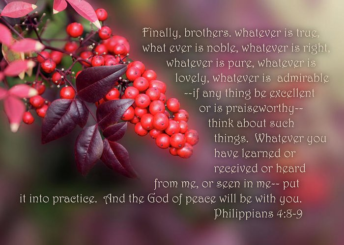 Scripture Greeting Card featuring the photograph Nandina Berries Phil.4 V 8-9 by Linda Phelps