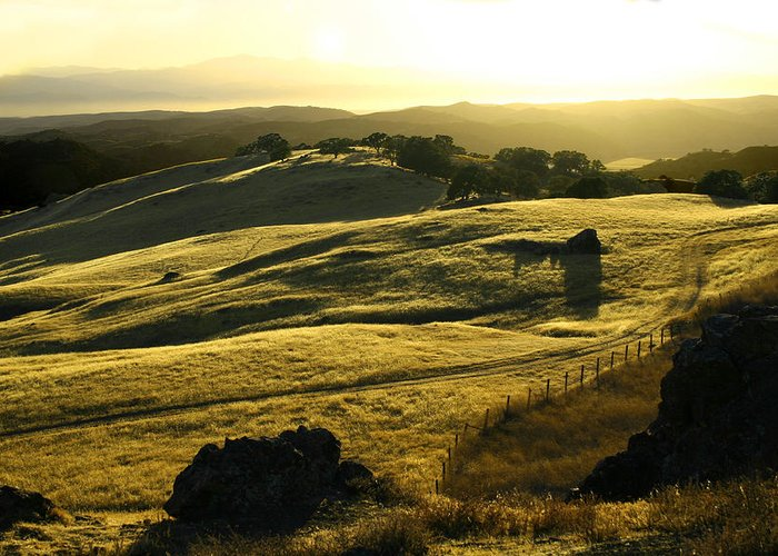 Nappa Valley Greeting Card featuring the photograph Napa Valley by Hans Jankowski