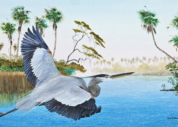 Blue Heron Greeting Card featuring the painting Nature Coast 2 by Kevin Brant