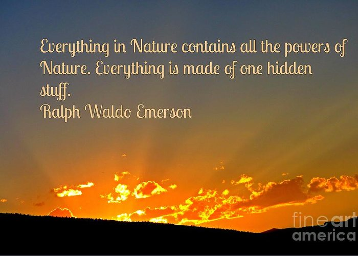Greeting Card featuring the photograph Nature by John Malone