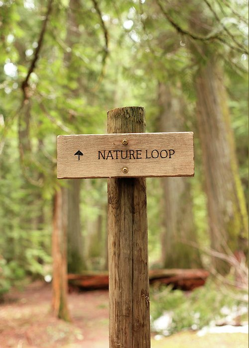 Nature Greeting Card featuring the photograph Nature Loop Sign by Tracy Chappell