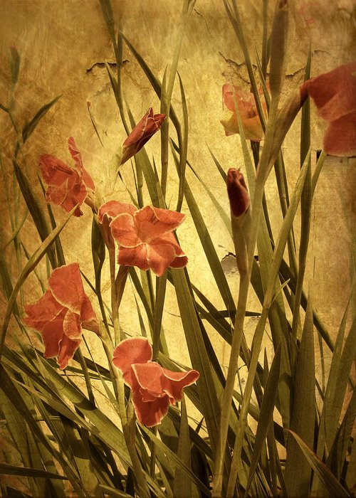 Flowers Greeting Card featuring the photograph Nature's Chaos In Spring by Jessica Jenney