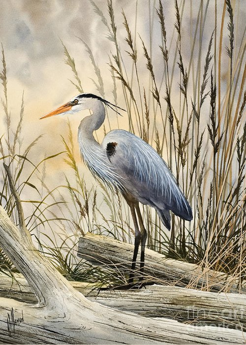 Heron Fine Art Prints Greeting Card featuring the painting Nature's Wonder by James Williamson