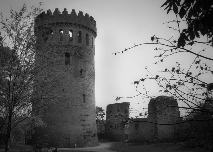 Ireland Greeting Card featuring the photograph Nenagh Castle County Tipperary Ireland by Teresa Mucha