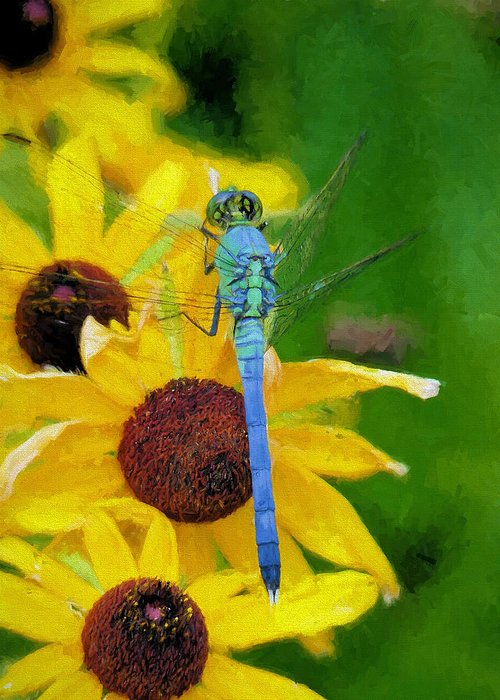 Dragonfly Greeting Card featuring the photograph Neon Pastels by JC Findley