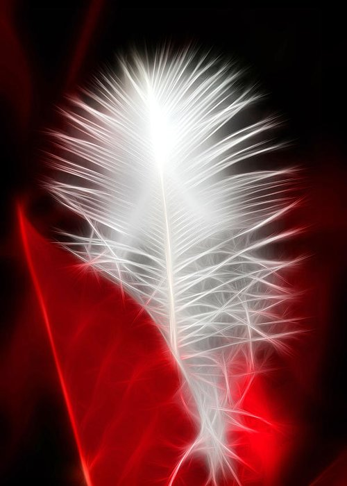 Feather Greeting Card featuring the photograph Neon Red Feather by Lesley Smitheringale