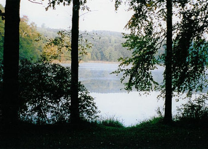 Forest Greeting Card featuring the photograph Nestling Lake by Tom Hefko