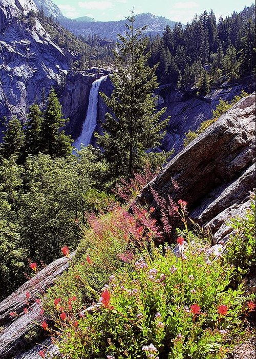 Nevada Falls Greeting Card featuring the photograph Nevada Falls Yosemite National Park by Alan Lenk