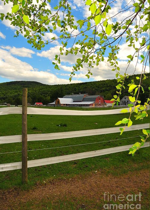 Agriculture Greeting Card featuring the photograph New England Farm by Catherine Reusch Daley