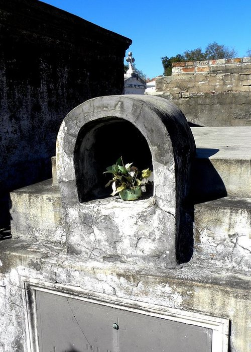 Photograph On Paper Greeting Card featuring the photograph New Orleans Crypts 2 by Patricia Bigelow