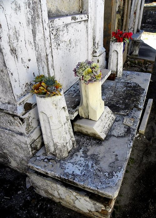 Photograph On Paper Greeting Card featuring the photograph New Orleans Crypts 6 by Patricia Bigelow