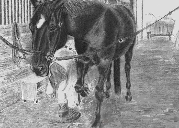 Horse Greeting Card featuring the drawing New Shoes by Quwatha Valentine