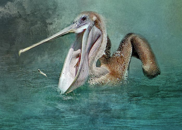 Brown Pelican Greeting Card featuring the photograph Nice Catch by HH Photography of Florida