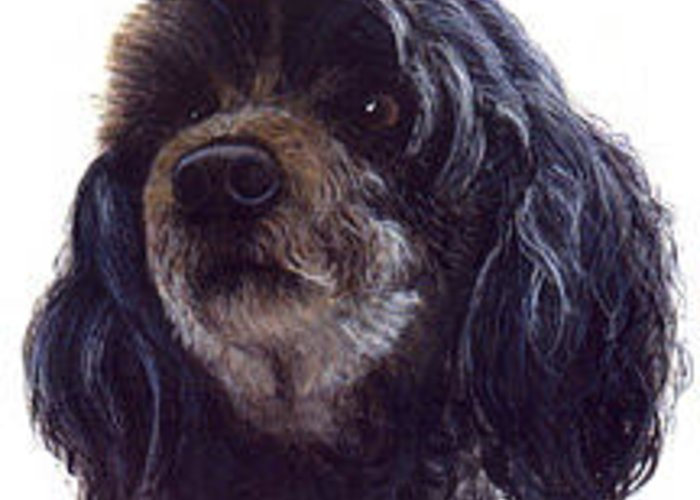 Pet Portrait Greeting Card featuring the painting Nikki by Janice M Booth