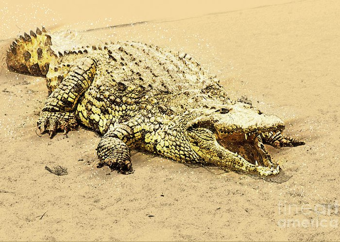 Nile River Greeting Card featuring the photograph Nile River Crocodile by Humorous Quotes